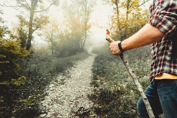 Sports Stock Photos - A hiker follows a forest road. Adven