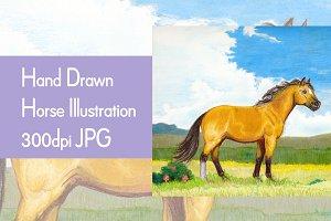 Buckskin Horse Illustration