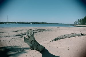 Vintage log on deserted beach scene