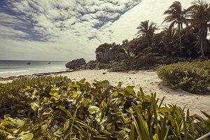 Solitary beach in Tulum