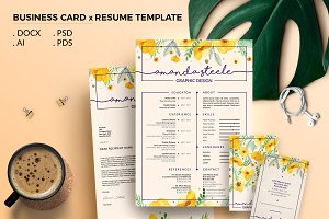 Pack Resume and Card Template / N