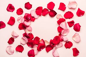 Romantic background with rose petal