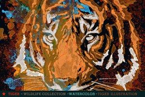 TIGER - watercolor