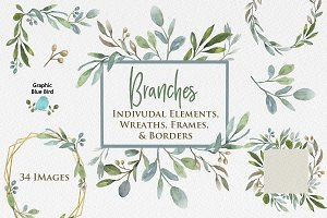 Branches Collection Greenery Clipart