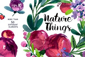 Vector Floral Watercolor Collection