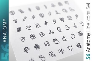 Anatomy Line Icons Set