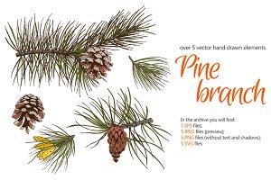 Pine Branch Sketch