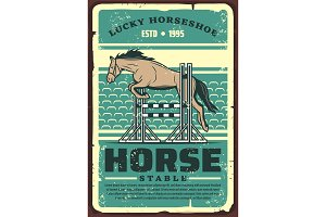 Horse jumping, equestrian sport