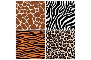 Zebra, giraffe and leopard patterns