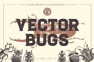 VECTOR BUGS HAND DRAWN BUNDLE V.13.0
