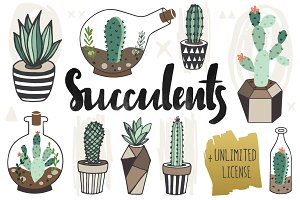 75%OFF Succulents +Unlimited License