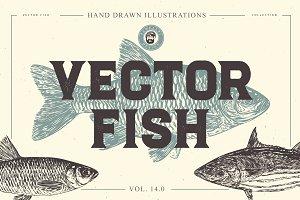 VECTOR FISH HAND DRAWN BUNDLE V.14.0
