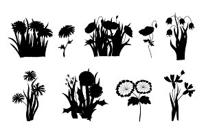 Flowers silhouettes. Set of wild