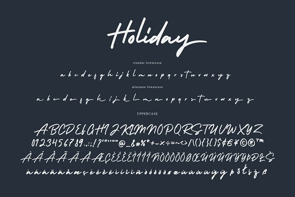 Holiday in Script Fonts - product preview 6