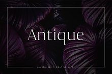 Antique - Luxury Serif Typeface by  in Serif Fonts