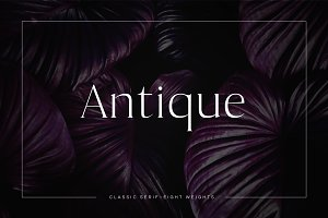 Antique - Luxury Serif Typeface
