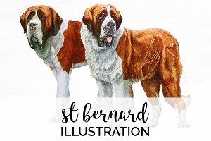 Saint Bernard Vintage Dog Watercolor