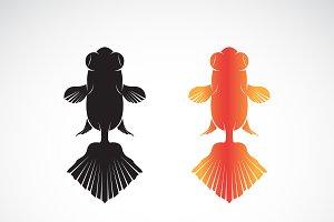 Vector of goldfish design. Fish Icon