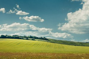 Picturesque rural landscape. Green f