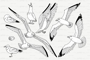 ♡ vector outline seagulls sea gull