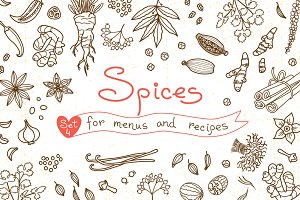 Spices - Design Set