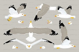 ♥ vector flat seagulls sea gull