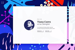 Esox - CV / Resume / vCard - PSD
