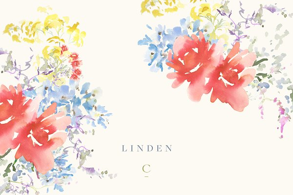 Hand Painted Watercolour - Linden