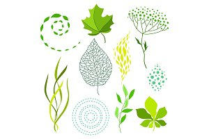 Set of various stylized green leaves