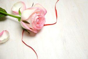 flower of pink roses on wooden backg