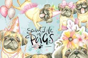Pugs Clipart Watercolor, Handpainted