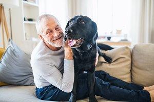 A happy senior man sitting on a sofa