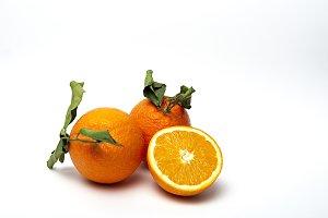 Oranges on white background.Isolated