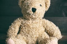 brown soft teddy bear sit by  in Abstract