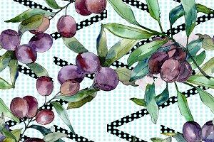 Black olive branch