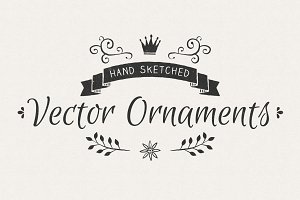 Hand Sketched Vector Ornaments