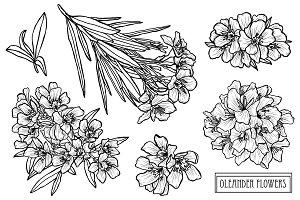 Oleander Flowers Set