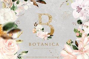 Botanica - Fine Art Aquarelle