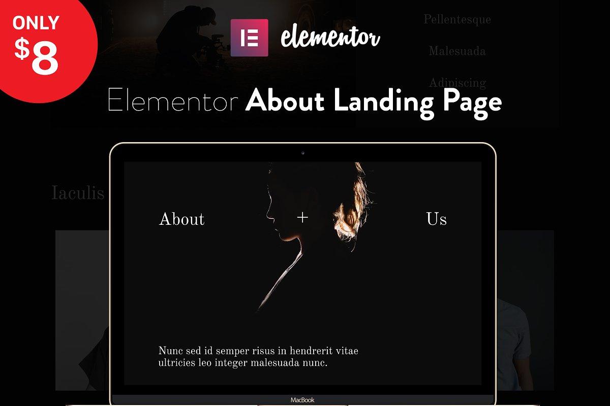 Elementor Landing Page Template