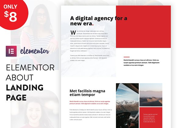 Elementor Landing Page Template in UI Kits and Libraries - product preview 1