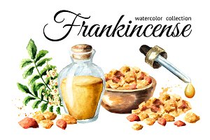 Frankincense. Watercolor collection