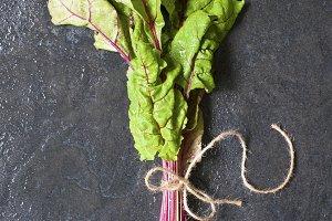 Fresh leaves of beet