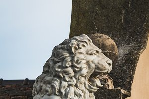 Sculpture of a lion on a roof