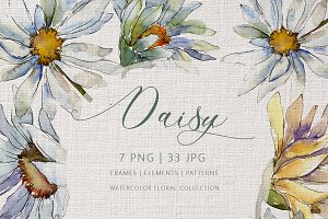 DAISY Watercolor png