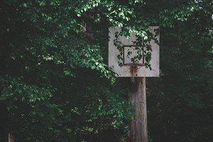 Overgrown Hoop