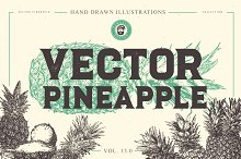 VECTOR PINEAPPLE HAND DRAWN BUNDLE