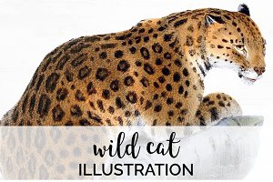 Wild Cat Vintage Watercolor