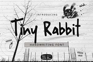 Tiny Rabbit Handwriting Font
