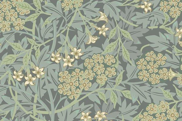 Vintage Illustration of Jasmine.