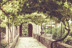 Gardens Alley at Albi, Tarn, France